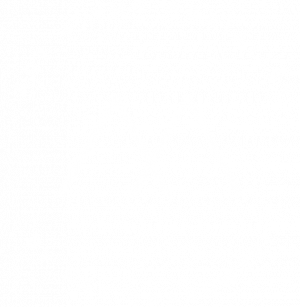 Art + The Aerialist